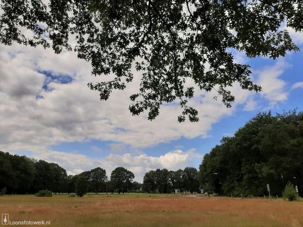 Wolken boven Moleneind