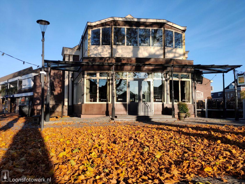 Herfstbladeren Oranjeplein