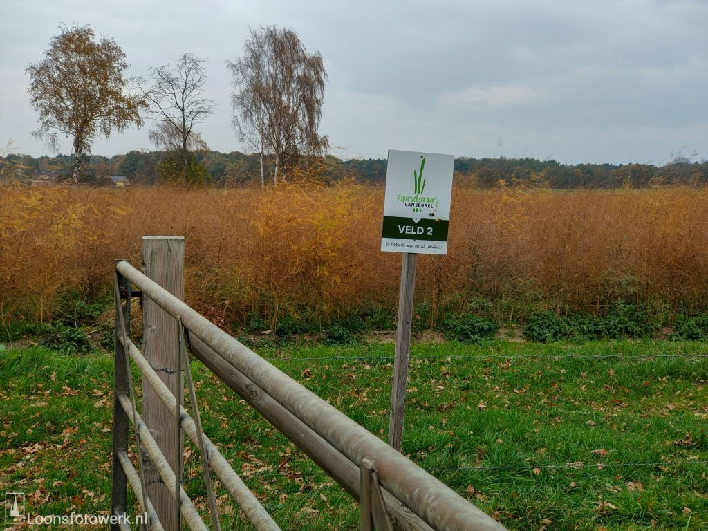 Ruilverkavelingsweg - Aspergesveld 2 en TerraVie