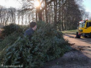 Inleveren kerstbomen