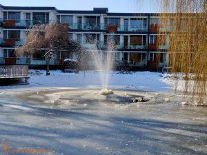Eenden vijver Residentie Molenwijck