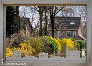 Voorjaar in Molenwijk Loon op Zand