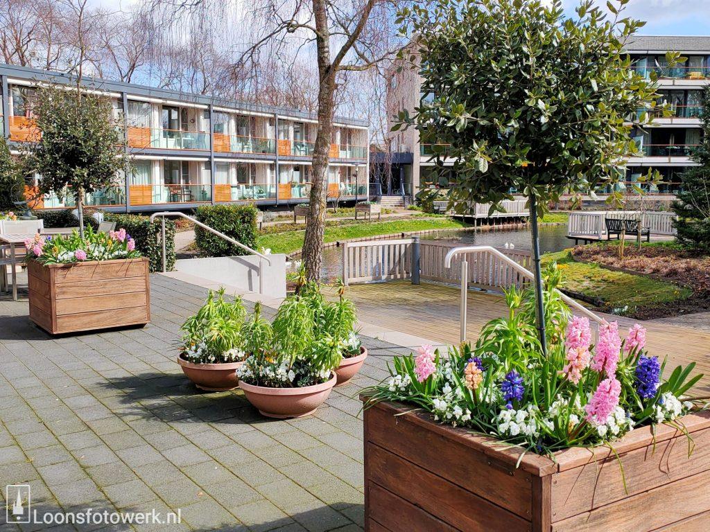 Voorjaar Residentie Molenwijck