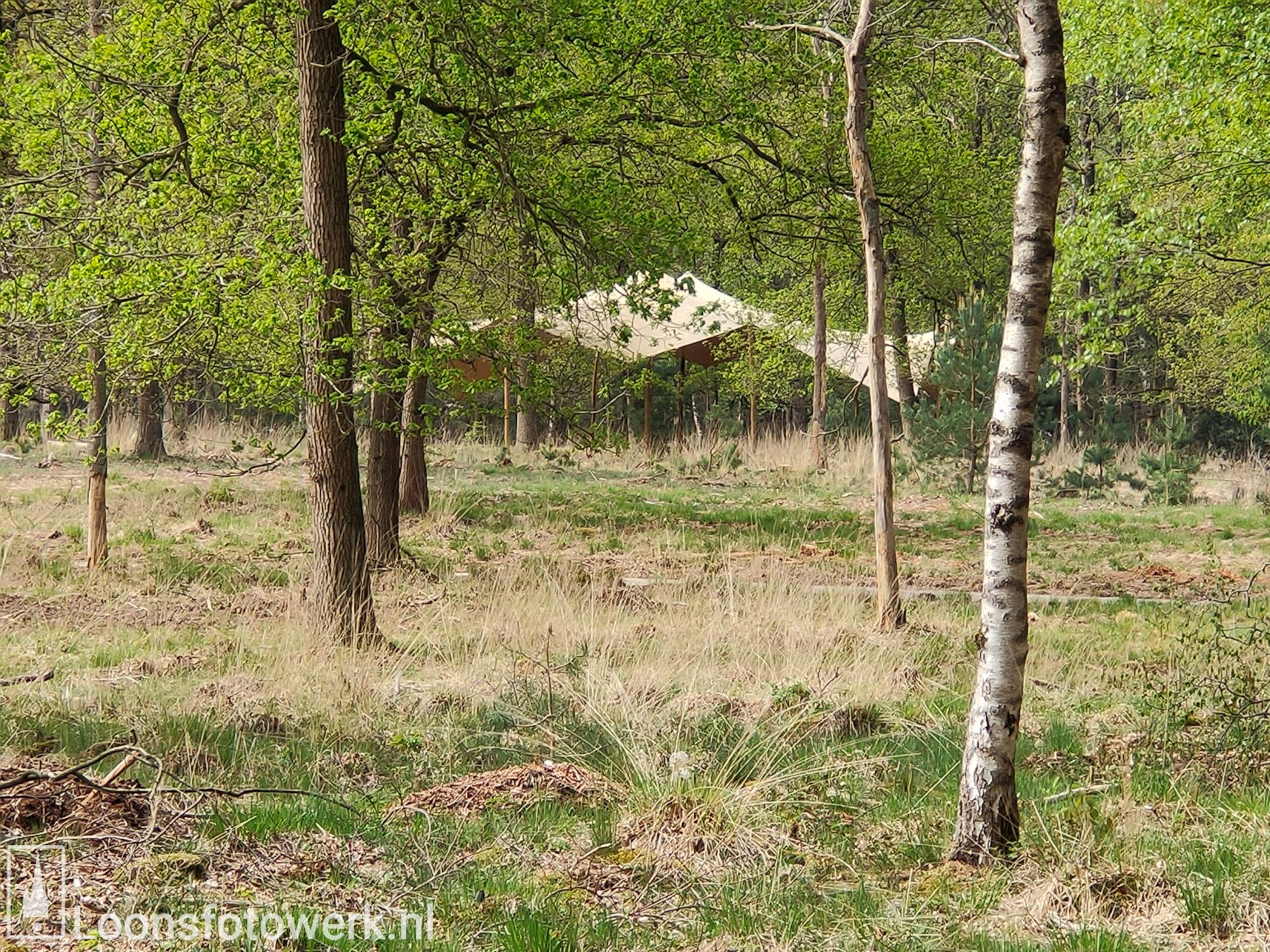 Natuurbegraafplaats Huis ter Heide 11