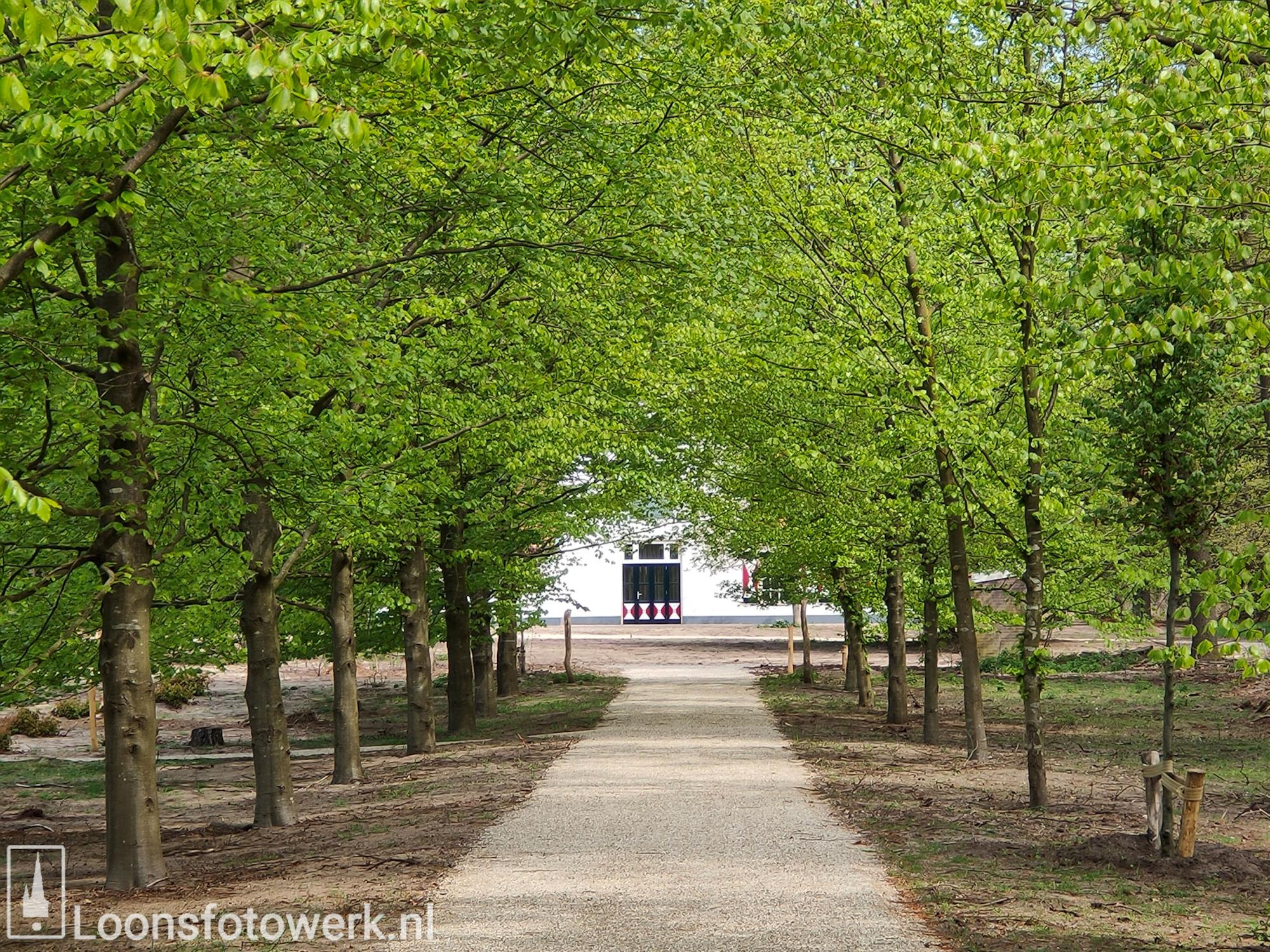 Natuurbegraafplaats Huis ter Heide 22
