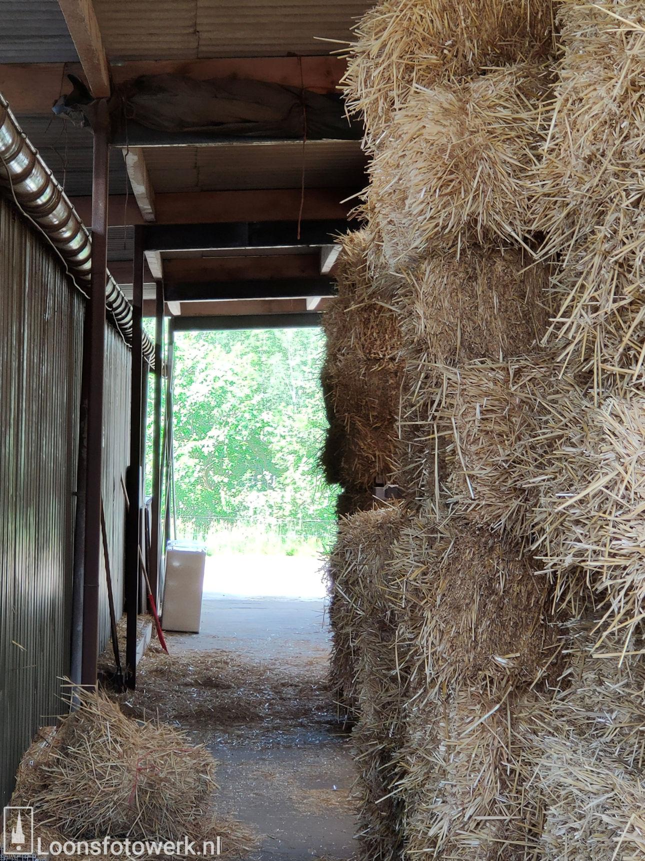 De Kommer boerderijcamping en paardenpension 19