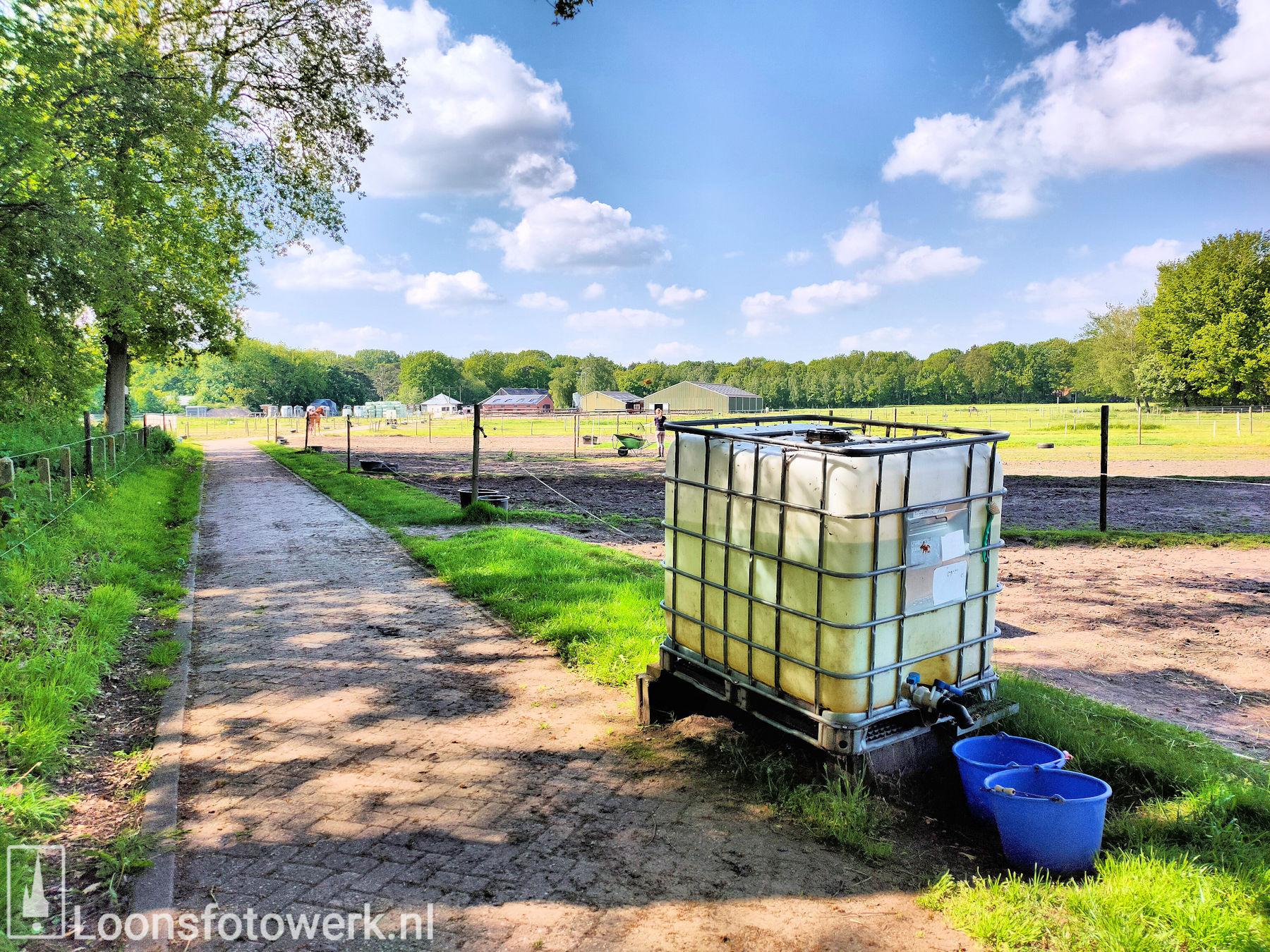De Kommer boerderijcamping en paardenpension 65
