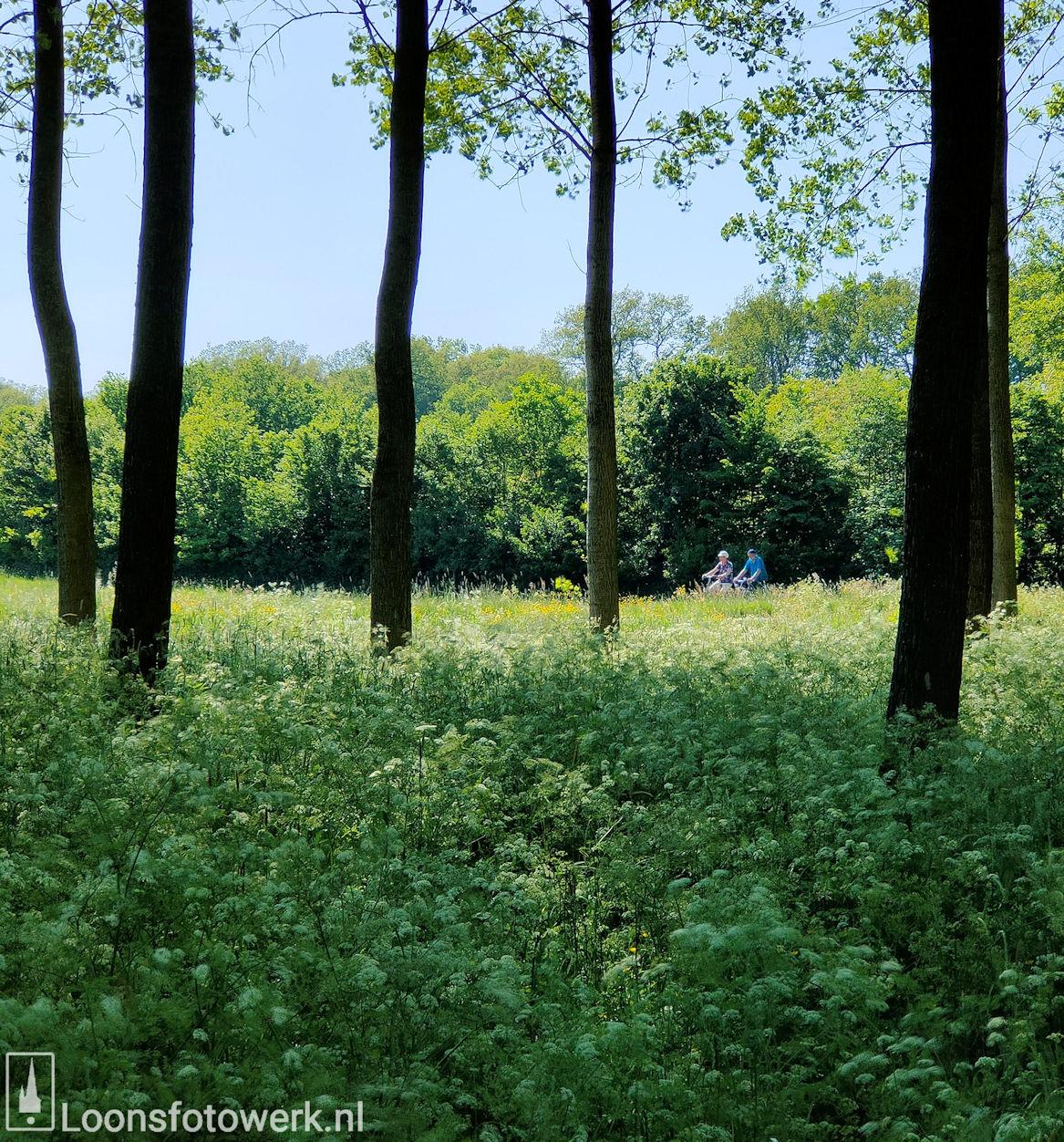 Kasteel Strijdhoef Udenhout 8