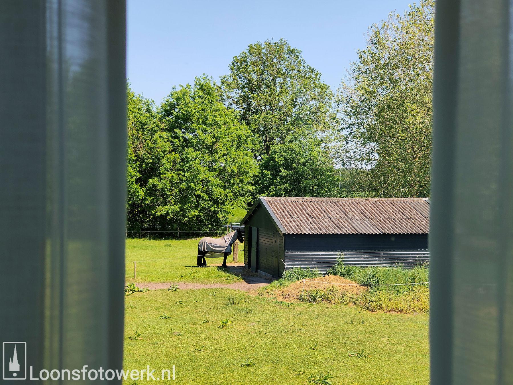 Luxe kamers en tenten bij De Zwammenberg 36