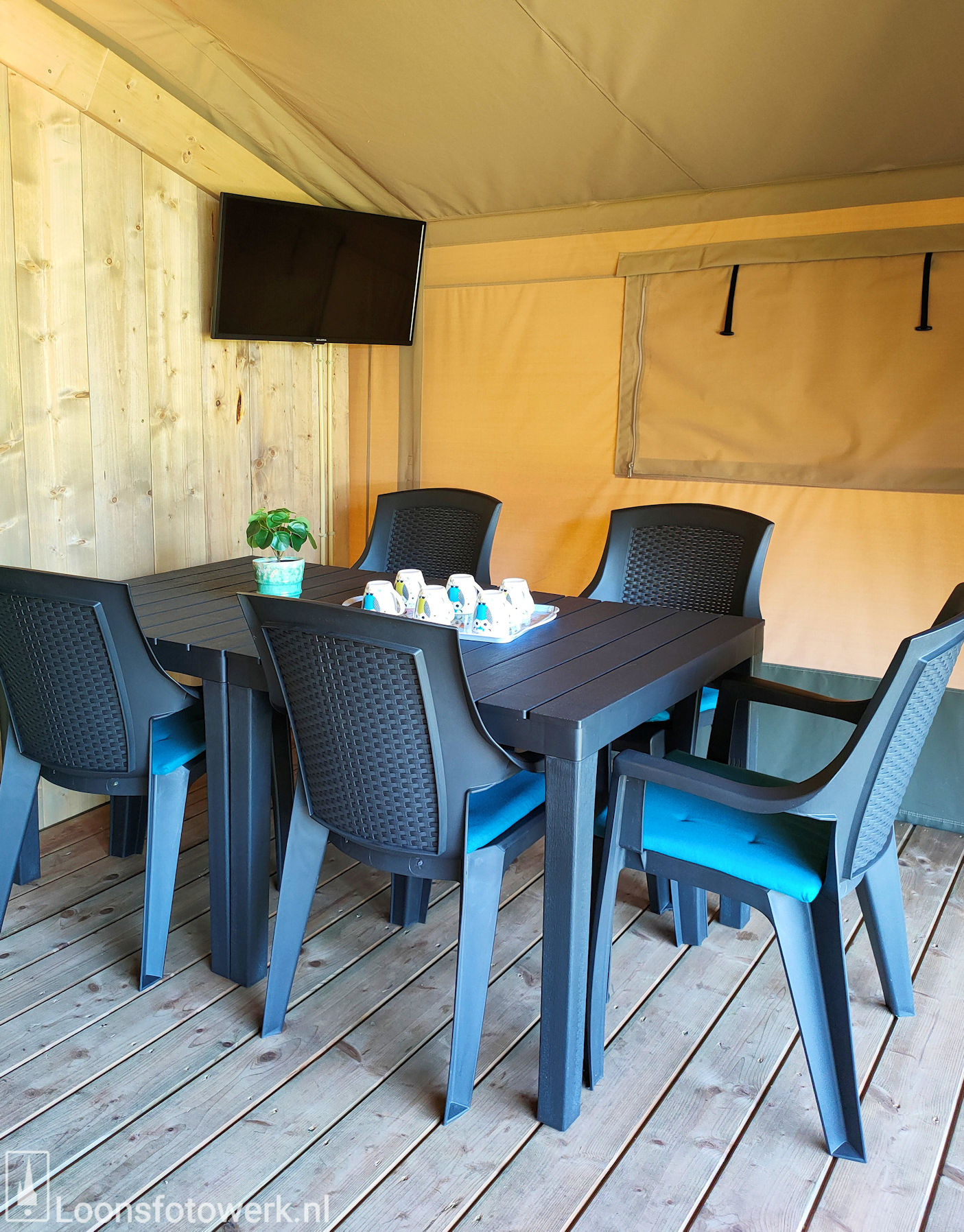 Luxe kamers en tenten bij De Zwammenberg 78
