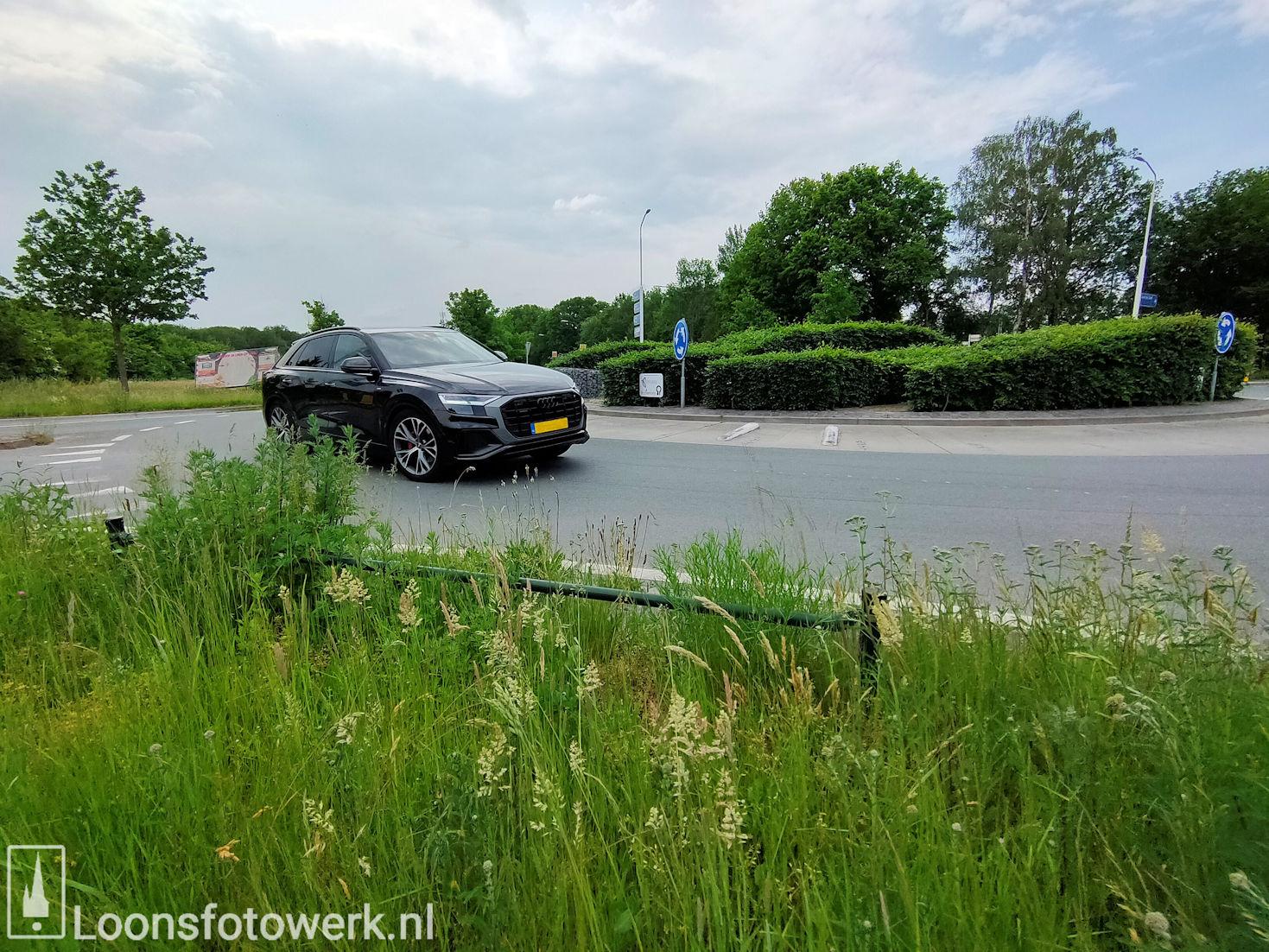 Rotonde Kasteellaan – Kasteelhoevenweg, juni 4