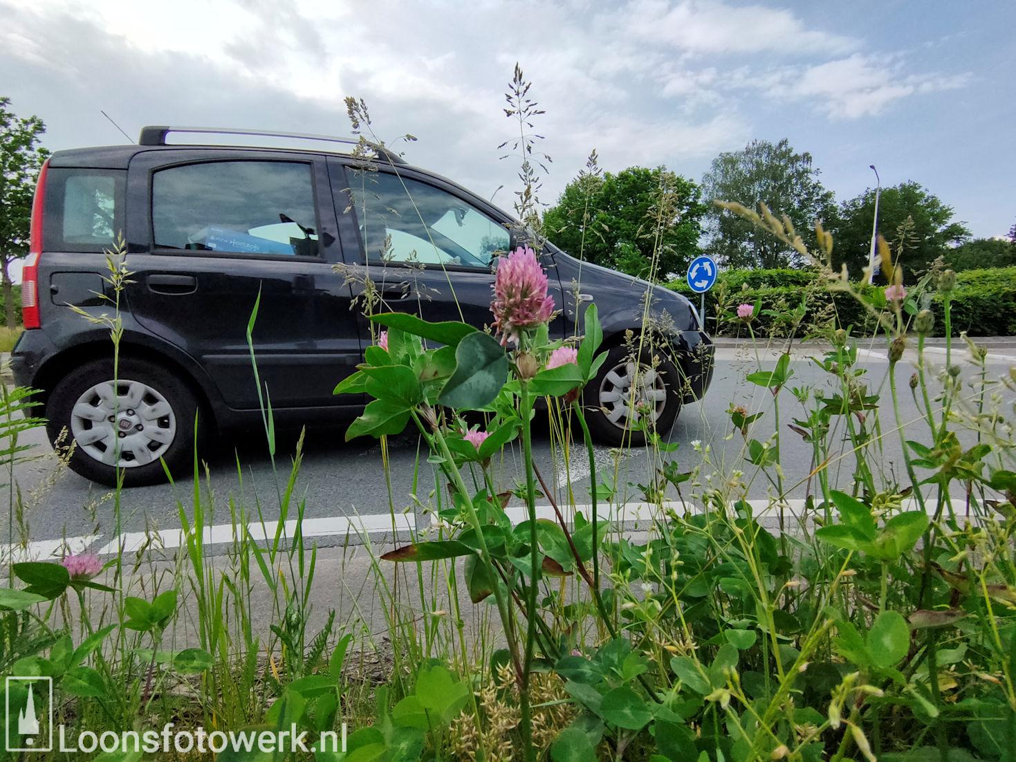 Rotonde Kasteellaan – Kasteelhoevenweg, juni 6