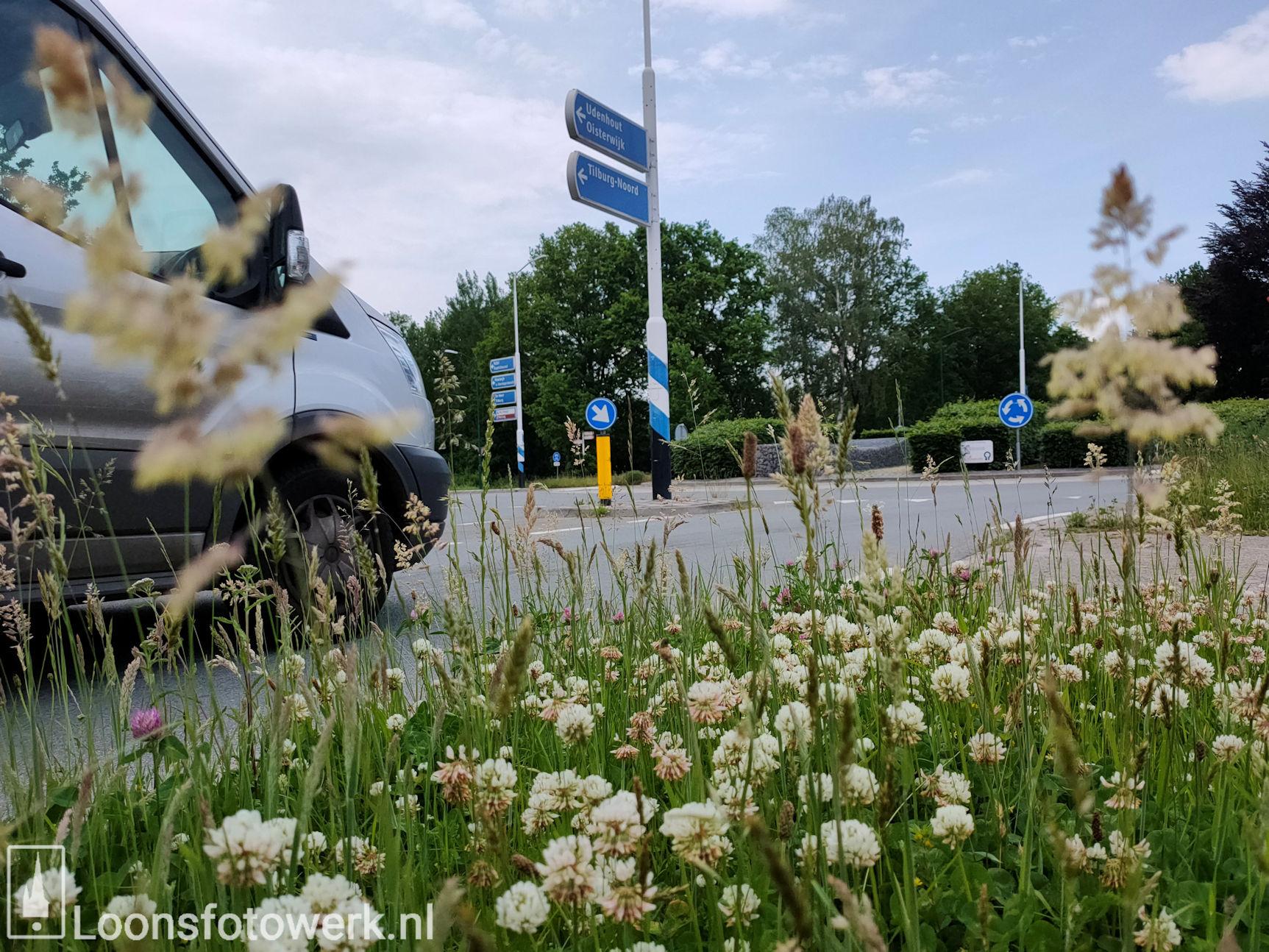 Rotonde Kasteellaan – Kasteelhoevenweg, juni 8