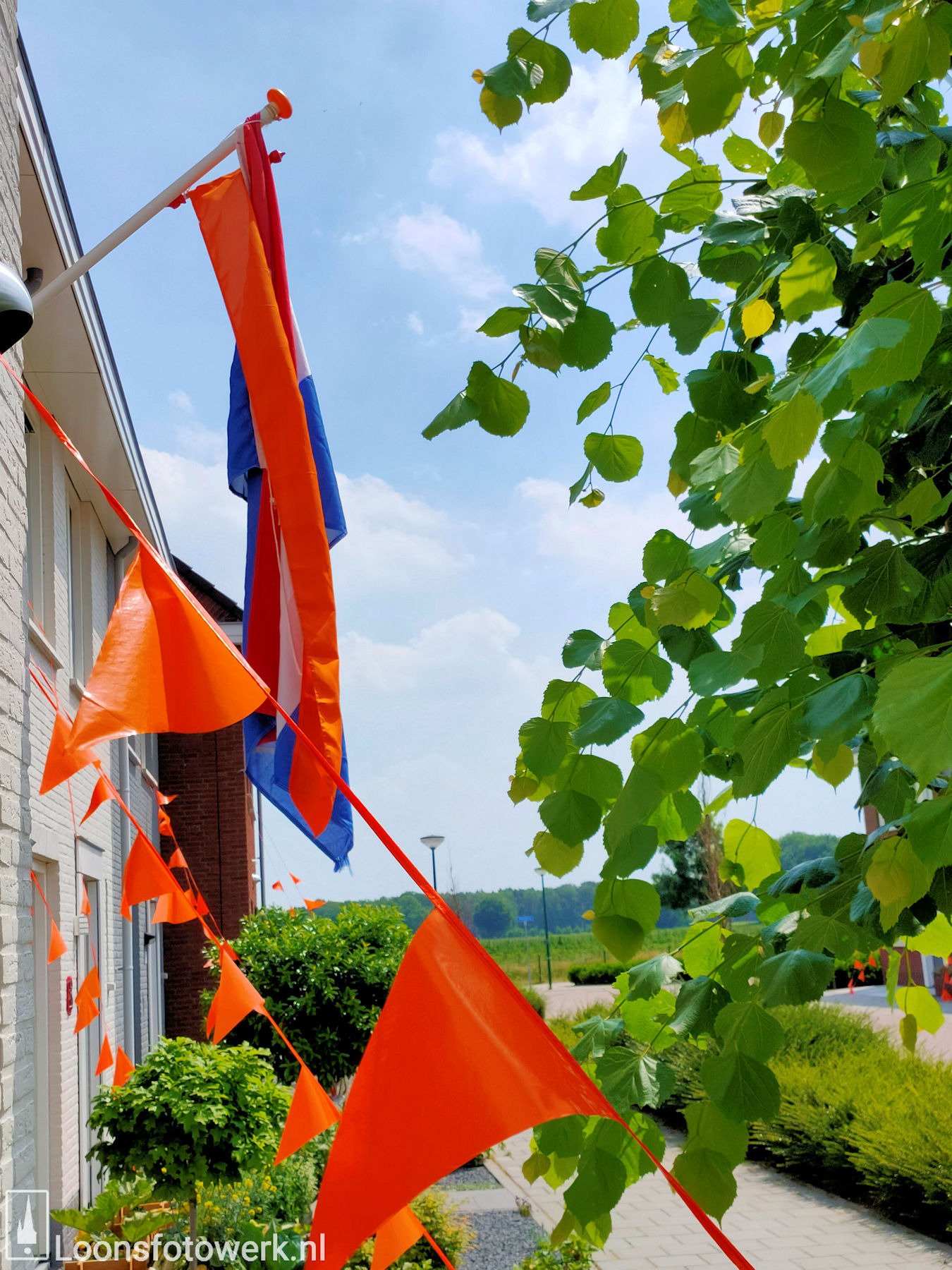 Loon kleurt oranje 29