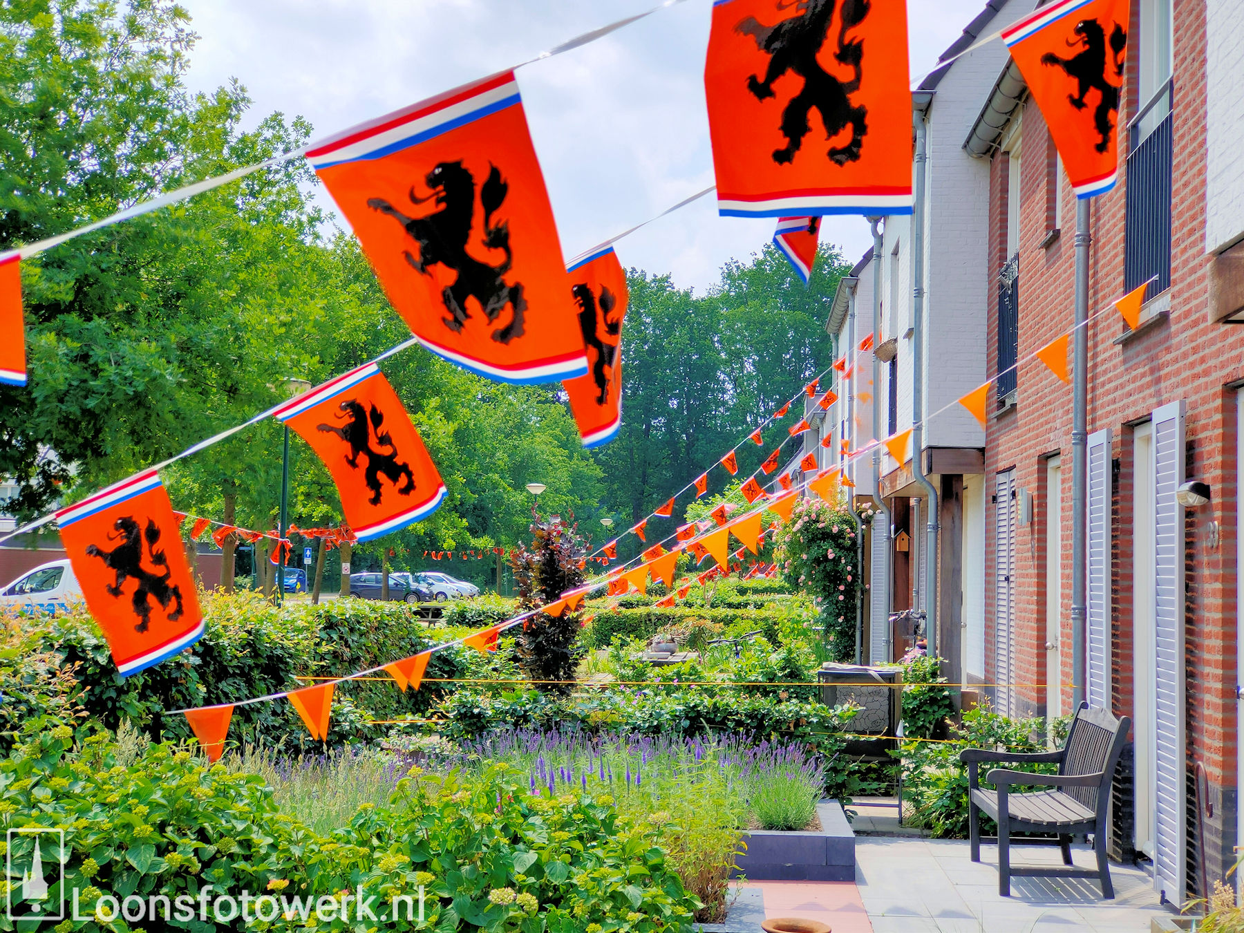 Loon kleurt oranje 33