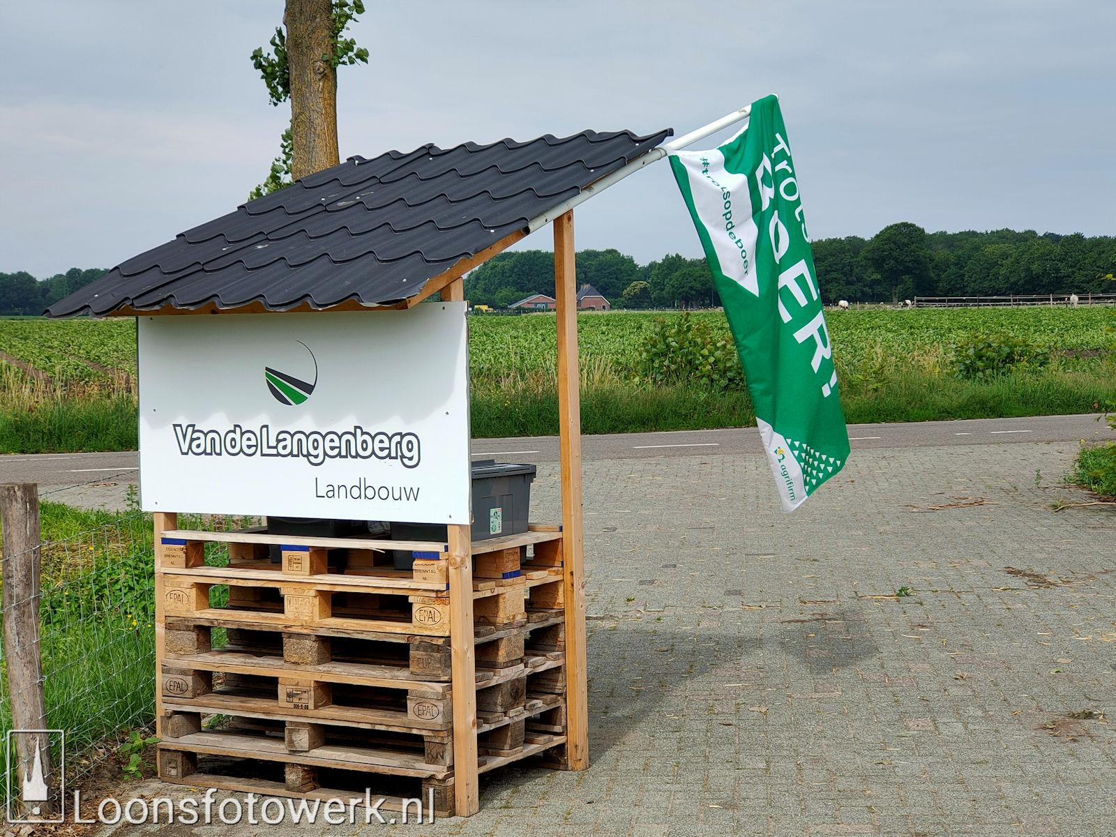 Aardappelen Van de Langenberg 4