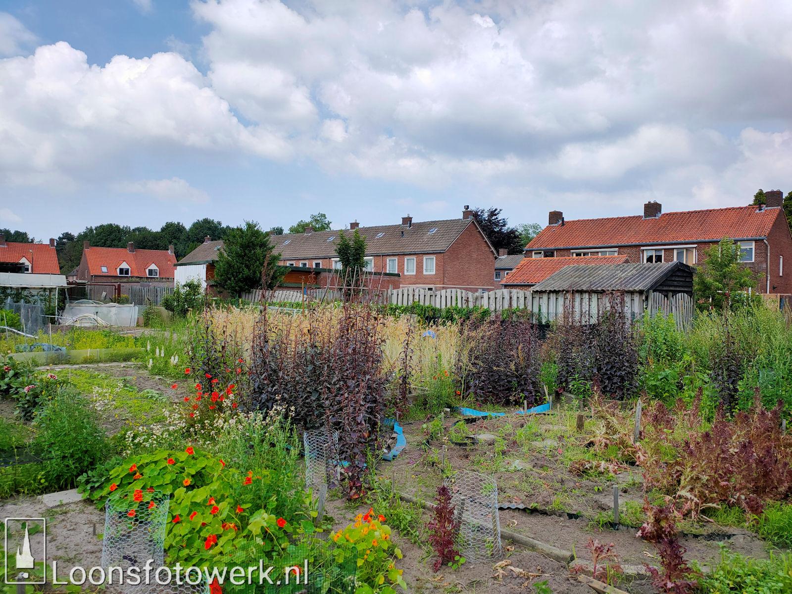 Verplaatsing tuinen Hooge Waai 1