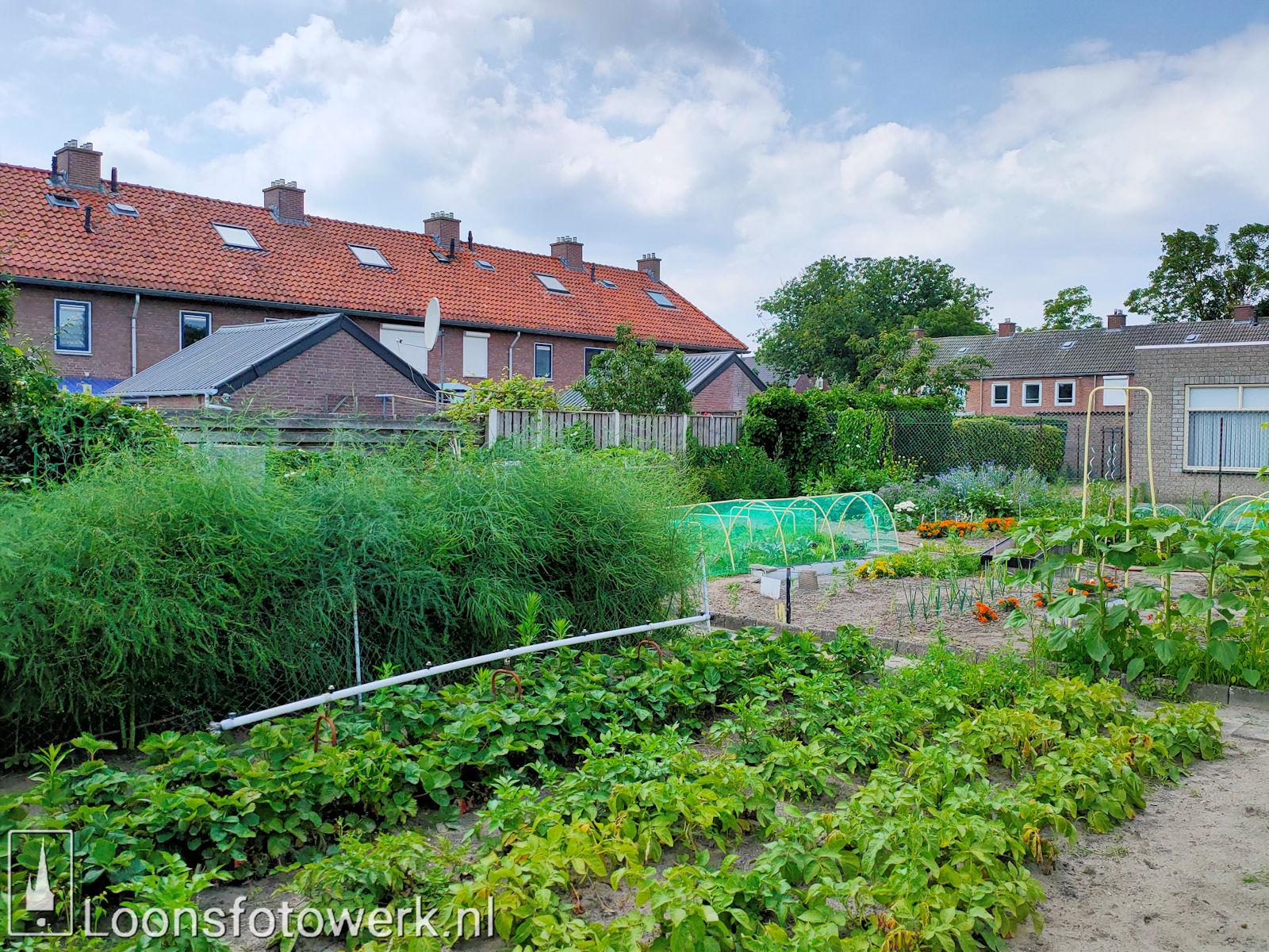Verplaatsing tuinen Hooge Waai 2