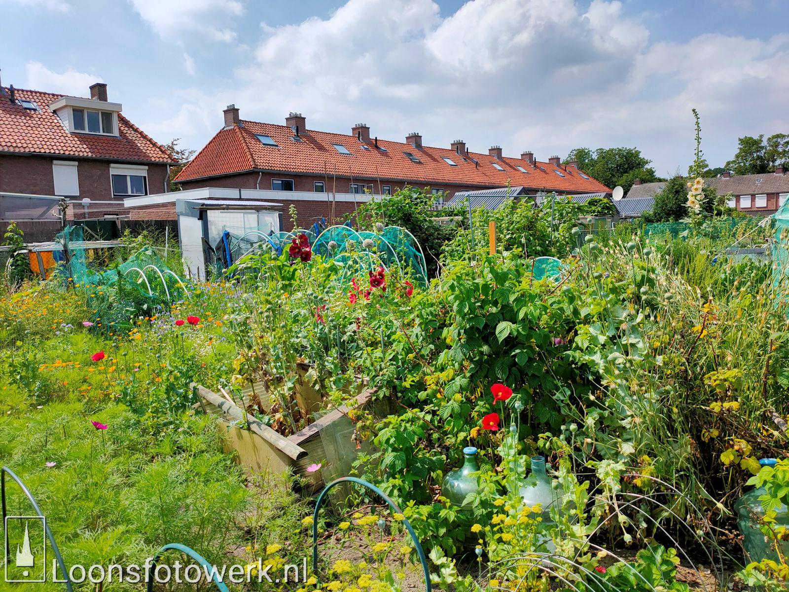 Verplaatsing tuinen Hooge Waai 8