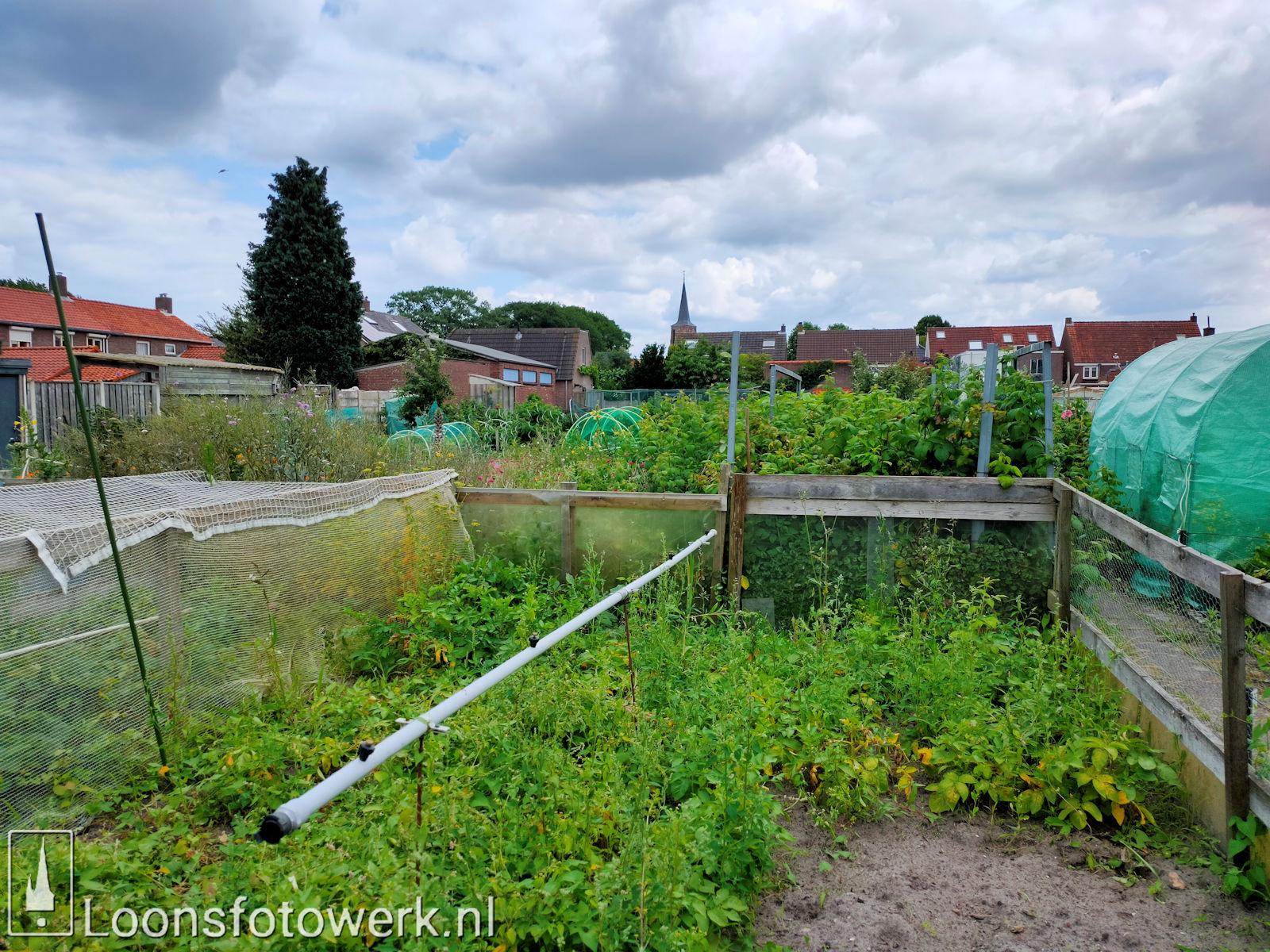 Verplaatsing tuinen Hooge Waai 10