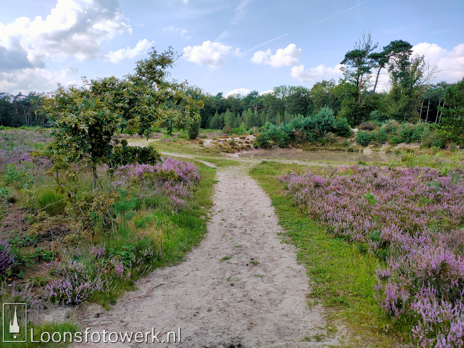 Heide 't Loonsche Land 21
